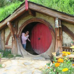 A Journey to Middle Earth
