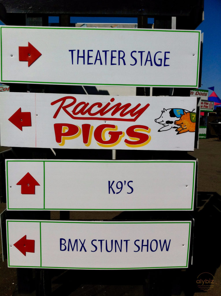 Deep fried oreos and racing pigs
